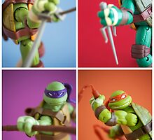 Heroes In A Half Shell  by Fanboy30