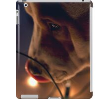 Stella iPad Case/Skin