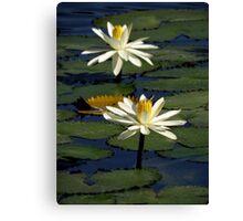 Pond Treasures ~ Part Thirteen Canvas Print