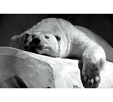 White nap. Photographic Print