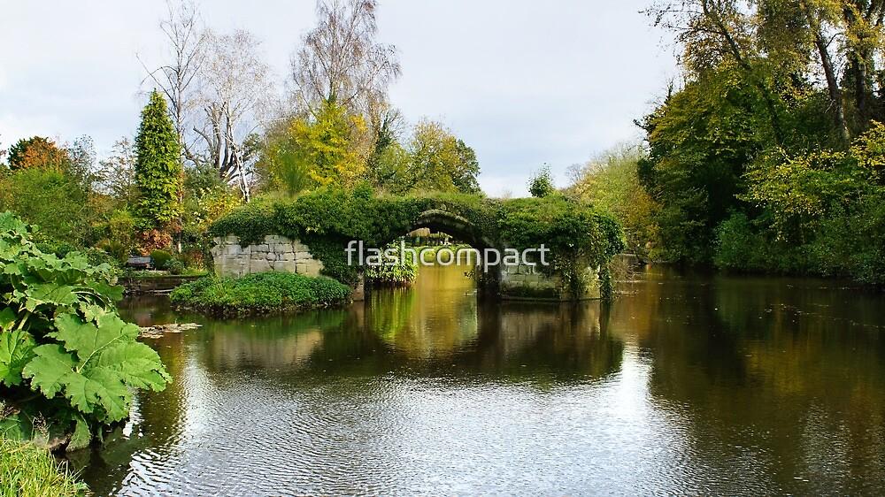 Medieval bridge river Avon by flashcompact