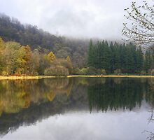 Yew Tree Tarn In Autumn by VoluntaryRanger