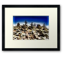 Dark sky & green nature Framed Print