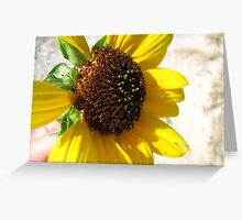 Yellow & Brown Greeting Card