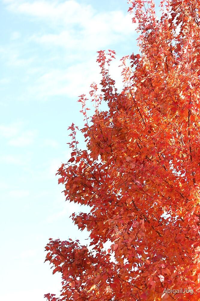 Orange Tree by AbigailJoy