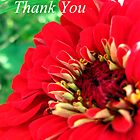 Red Flower Thank You by AbigailJoy