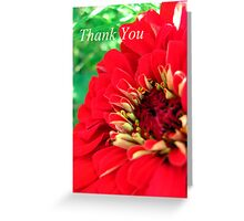 Red Flower Thank You Greeting Card