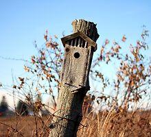 The Birdhouse by AbigailJoy