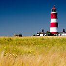 Happisburgh lighthouse by cieniu1