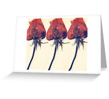 Rose of History Greeting Card
