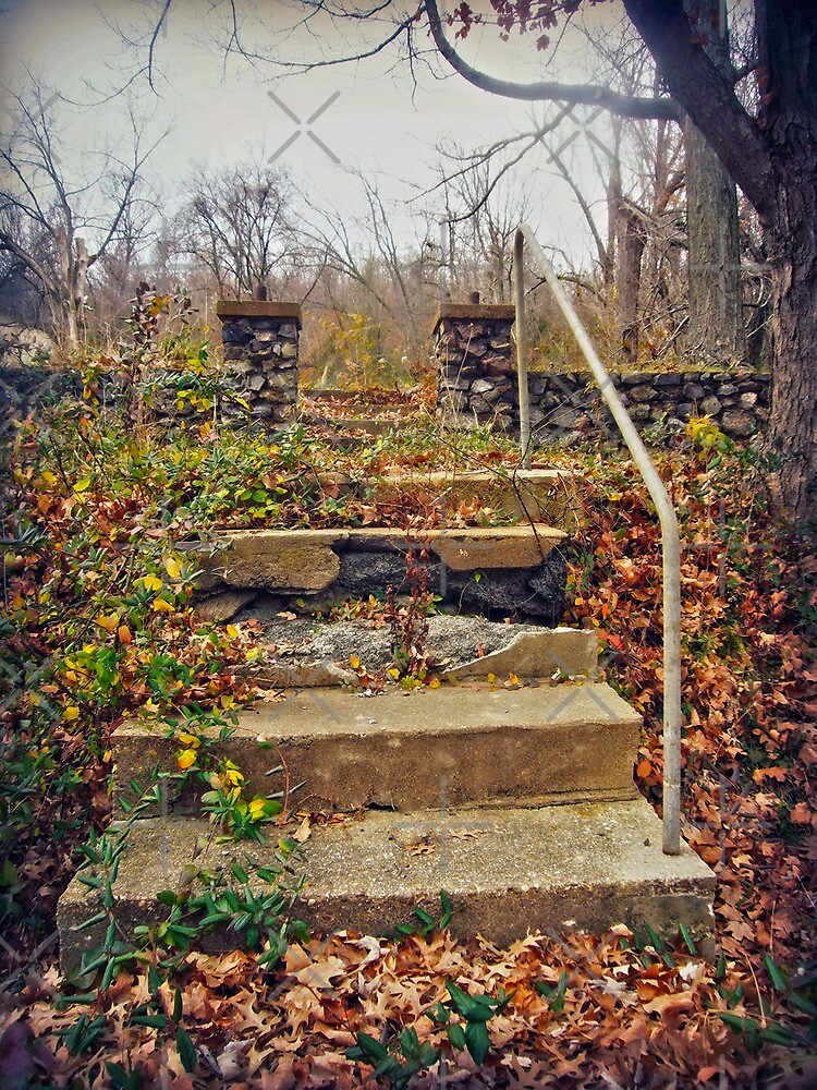 The Stairs by Susan S. Kline