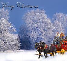 Winter Stagecoach Ride Merry Christmas Card by Randy & Kay Branham