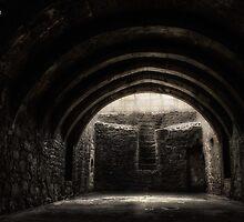 I Seek The Light || Crookston Castle, Crookston, Scotland by Anir Pandit