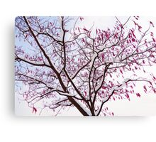 Tree & Snow  Canvas Print