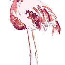 Flamingo by caseysplace
