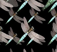 Dragonfly Air Force on Black by pjwuebker
