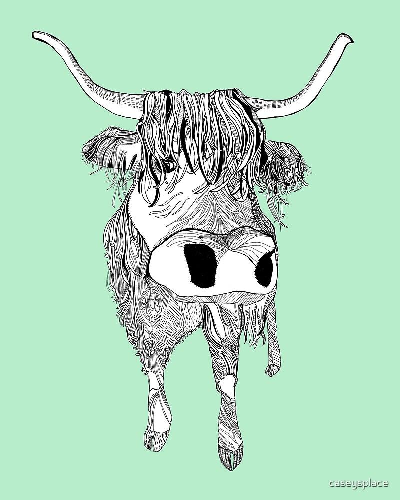 Highland Cow by caseysplace