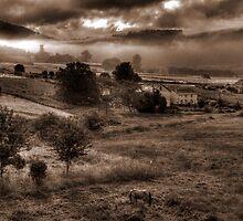 Moeche Valley B&W by ollodixital