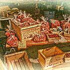 Cape Cod cranberries by DonaldCole