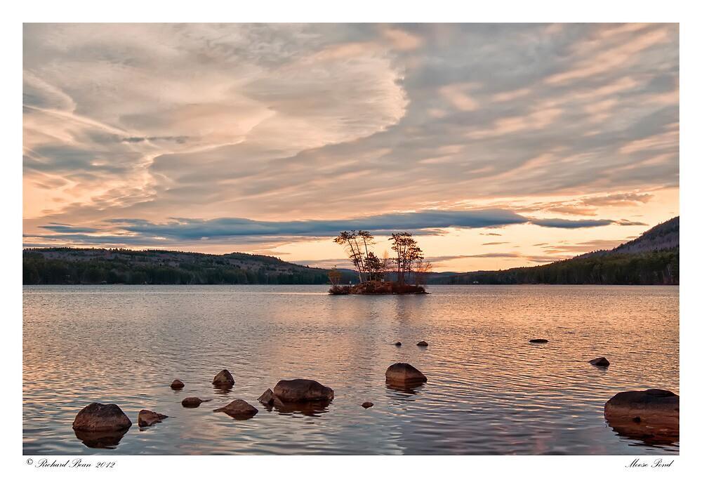 Moose Pond by Richard Bean