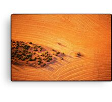 OASIS IN THE WHEAT FIELD Canvas Print