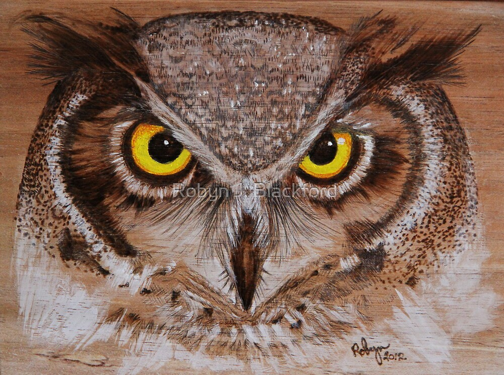 PYROGRAPHY: Great Horned Owl by aussiebushstick