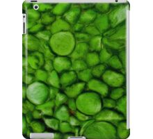 Green River Rocks  iPad Case/Skin