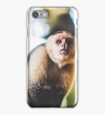 White-Faced Capuchin Monkey iPhone Case/Skin