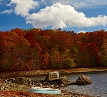 Bog Brook Reservoir, Brewster New York by Nancy Rohrig