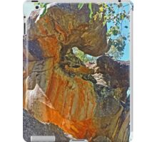 Sculpture by Nature iPad Case/Skin