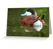 Ruddy Duck Reflections Greeting Card