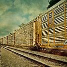 Long Train Runnin' by Scott Mitchell