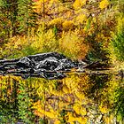 Tumwater Canyon by Jim Stiles