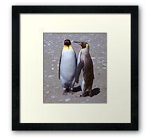 King Penguin Conversation, 'Oh no! I don't think so.' Framed Print
