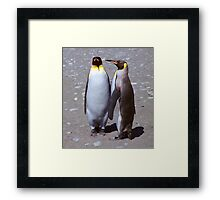 King Penguin Conversation, 'Oh no! I don't think so.' Framed Print