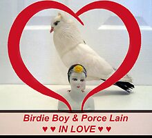 Birdie Boy and Porce Lain ♥ ♥ IN LOVE ♥ ♥ by Jaeda DeWalt