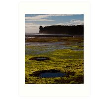 Rockpools and Climbers Art Print