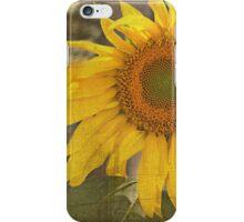 Love Sunflowers iPhone Case/Skin