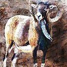 URIAL 2 by Tammera