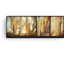 Willow Triptych Canvas Print