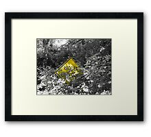 Hidden Irony Framed Print
