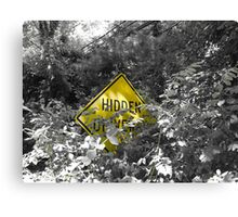 Hidden Irony Canvas Print