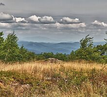 Prospect Mountain View by Mary Jo Taft