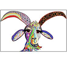 Somebody Get Your Goat? Photographic Print