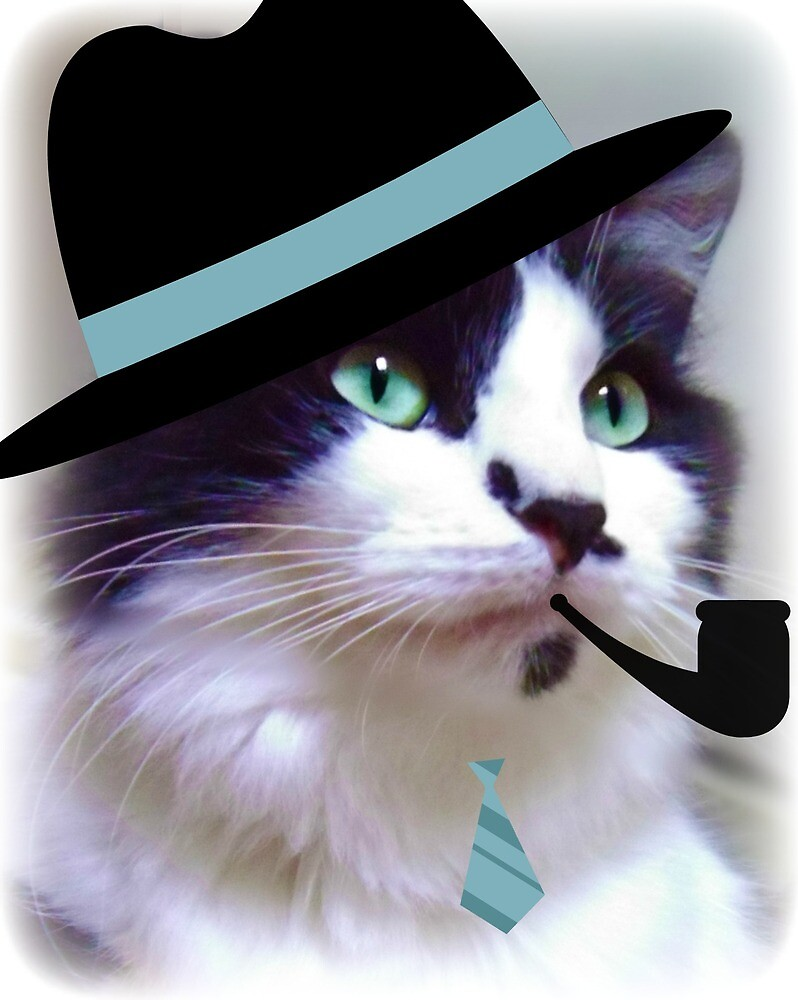 Cat In Hat  by vic321
