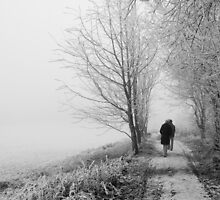 A Winter's Walk by Aaron Corr