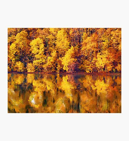 full of yellows Photographic Print