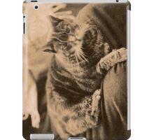 Retro Cat iPad Case/Skin