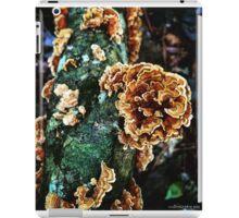 Turkeytails iPad Case/Skin