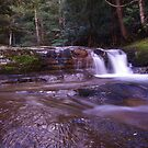 LIffey Falls at Dawn #4 Tasmania Australia by spyke